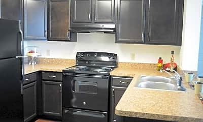 Kitchen, The Lofts at Roberts, 1