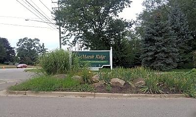 Marsh Ridge, 1