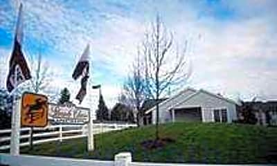 Steeple Chase, 0