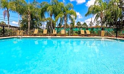 Pool, The Palms at Ashley Oaks, 1