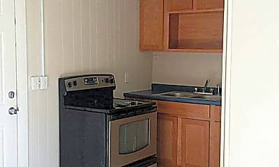 Kitchen, 33 Summer St, 1