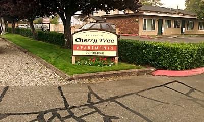 Cherry Tree, 1