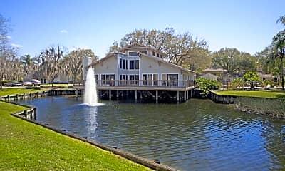 Swan Lake, 0