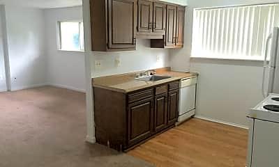 Kitchen, 308 Jarvis St, 1