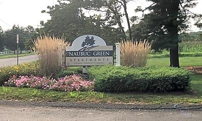 Naubuc Green, 1