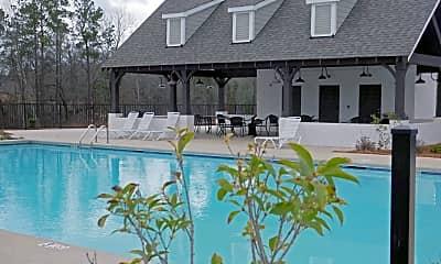 Pool, 907 Delaney Dr, 2