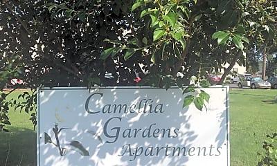 Camellia Gardens, 1