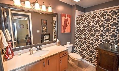 Bathroom, 1550 S Blue Island Ave 405, 1