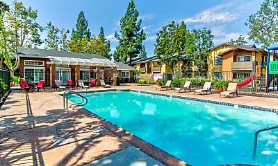 Pool, Citrus Gardens Apartments, 0