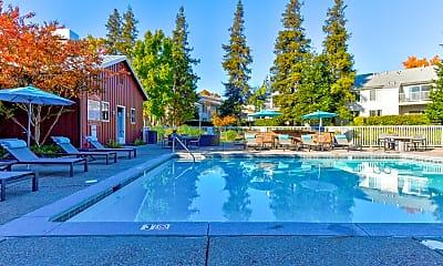 Pool, Cotton Wood Apartments, 1