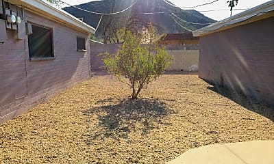 Cactus Place, 2