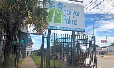 Banyan Palms at Spring Branch, 1