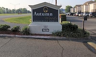 Autumn Woods, 1