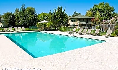 Pool, 1450 Springfield Dr, 1