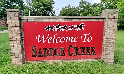 Saddle Creek, 1