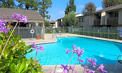 Pool, Spring Tree Apartments, 0
