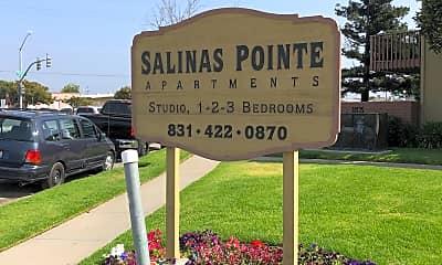 SALINAS POINTE APTS, 1