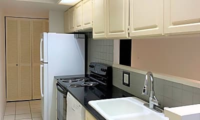Kitchen, 217 Prospect St, 0
