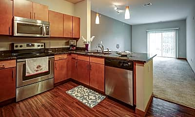 Kitchen, Mammoth Springs Apartments, Townhomes & Lofts, 1