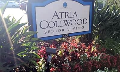 Atria Collwood, 1