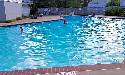 Pool, Forest In Farmington, 2
