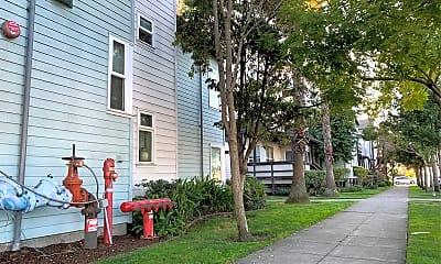 Chestnut Linden Court, 0