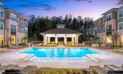 Pool, 9550 Community Commons Ln, 1