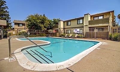 Pool, 4930 College Oak Dr, 0