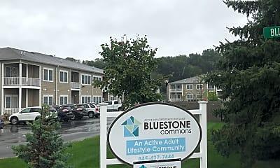 Bluestone Commons, 1
