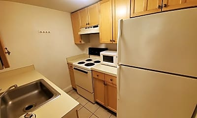 Kitchen, 33 Holyoke St, 2