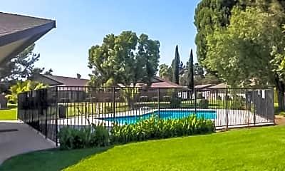 Pool, Palm Gardens, 1