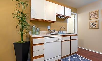 Kitchen, Diamond Forest, 2