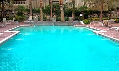 Pool, 1500 Cardinal Peak Ln, 1