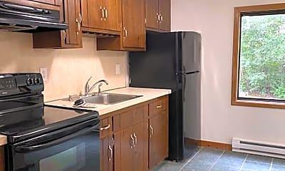 Kitchen, 17 Farmington Ave, 0