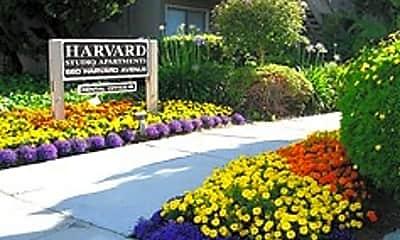 Harvard Studios, 1