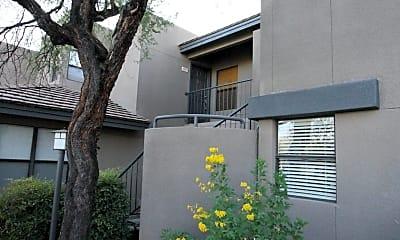 Building, 5855 N Kolb Rd 6211, 1