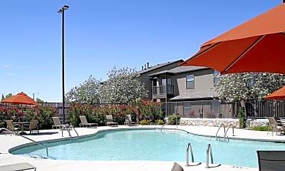 Pool, Mountain Vista, 0
