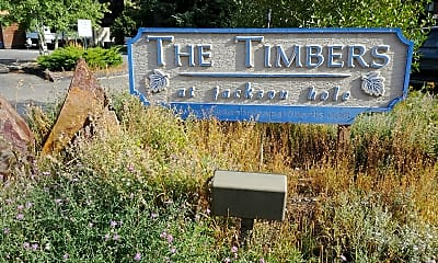The Timbers, 1