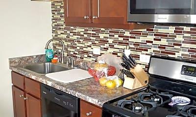 Kitchen, 503 Duane Street, 1