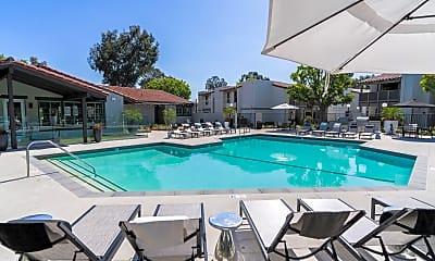Pool, The Vineyards, 1