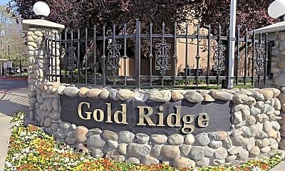 Gold Ridge, 2