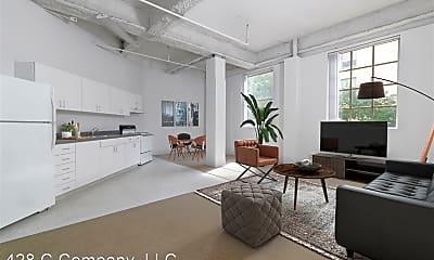 Living Room, 428 C St, 1