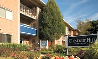 Chestnut Hill, 1