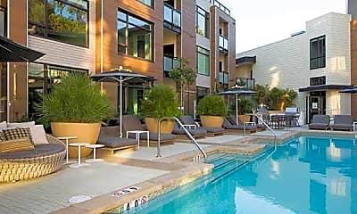 Pool, Montrose, 1