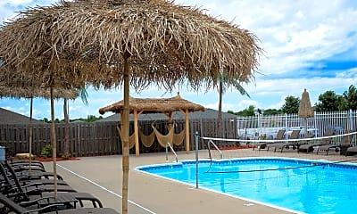 Pool, Palm Village Apartments, 2