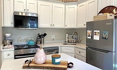Kitchen, 54 Irving St, 1