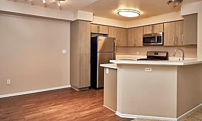 Kitchen, Alta Vista, 1