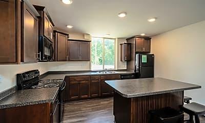 Kitchen, 251 River St, 1