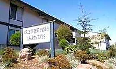 Crestview Pines, 1