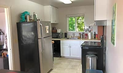 Kitchen, 36 Orchard Ave, 1